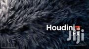 Sidefx Houdini FX V16.5 | Laptops & Computers for sale in Greater Accra, Roman Ridge