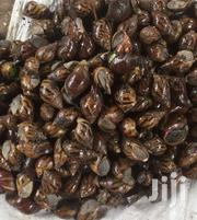 Health Snails For Sale | Other Animals for sale in Volta Region, Ho Municipal