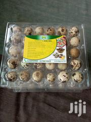 Quail Eggs | Meals & Drinks for sale in Greater Accra, Asylum Down