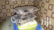 Frozen Snails | Meals & Drinks for sale in Greater Accra, Adenta Municipal
