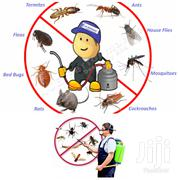 Professional Pest Control Services | Automotive Services for sale in Greater Accra, Accra new Town