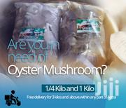Oyster Mushroom For Sale | Meals & Drinks for sale in Greater Accra, Adenta Municipal
