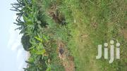Land for Sale at Ahenema Kokoben | Land & Plots For Sale for sale in Ashanti, Kumasi Metropolitan