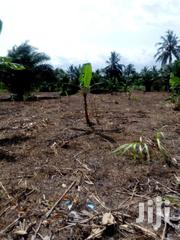Farm Land For Sale & Long Lease | Land & Plots For Sale for sale in Greater Accra, Adenta Municipal