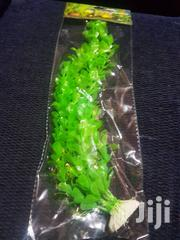 Aquarium Plants | Pet's Accessories for sale in Ashanti, Kumasi Metropolitan