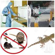 R.S.V Fumigation And Pest Control Services | Cleaning Services for sale in Greater Accra, Avenor Area
