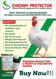 Naah Farms & Trading Ventures Day Old Birds For Sale | Feeds, Supplements & Seeds for sale in Greater Accra, Accra Metropolitan