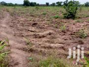 5 and a Half Acre Land for Sale at Brong Ahafo | Land & Plots For Sale for sale in Brong Ahafo, Tano North