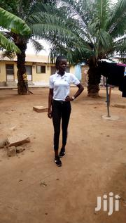 I'm Interested About The Job   Other CVs for sale in Greater Accra, Adenta Municipal