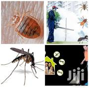 Pest Control Services | Cleaning Services for sale in Greater Accra, North Labone