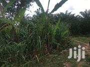 Lands for at Adako Jachie Tech - Ejisu Road | Land & Plots For Sale for sale in Ashanti, Kumasi Metropolitan