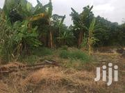 3 Plots of Land at Tei Nkwanta 2nd Plot From Main Road | Land & Plots For Sale for sale in Eastern Region, New-Juaben Municipal