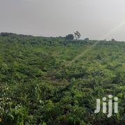 Acres of Farmland for Sale at Asutuare | Land & Plots For Sale for sale in Greater Accra, Ga West Municipal