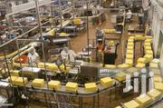 Factory and Warehouse Workers | Manufacturing CVs for sale in Greater Accra, Tema Metropolitan