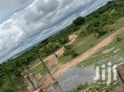 Quick Sale At Afienya Lands For Sale | Land & Plots For Sale for sale in Greater Accra, Ashaiman Municipal