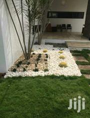Nams Landscaping | Garden for sale in Greater Accra, Asylum Down