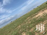 Promotion Lands @ Tsopoli New Airport City | Land & Plots For Sale for sale in Greater Accra, Ashaiman Municipal
