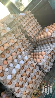 Eggs Supply | Other Animals for sale in Greater Accra, Adenta Municipal