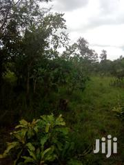 Land In Ho For Sale | Land & Plots For Sale for sale in Volta Region, Ho Municipal