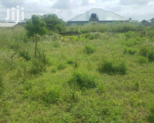 Archive: Two Plot Of Land At Kasoa Ofankor Road For Sale