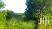 Two Plots of Land Fenced With Gate | Land & Plots For Sale for sale in Greater Accra, Kwashieman