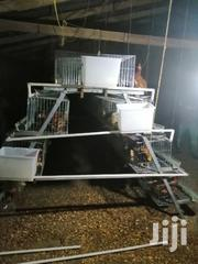 Poultry Cages | Farm Machinery & Equipment for sale in Greater Accra, Ga South Municipal