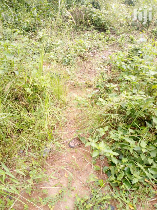 Archive: Register Land for Sale at Amanfrom on the Adenta-Dodowa Road