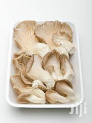 Organic Oyster Mushroom | Meals & Drinks for sale in Eastern Region, New-Juaben Municipal