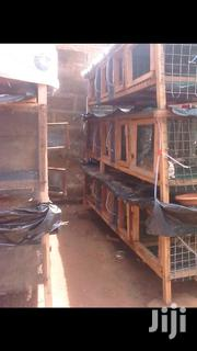 High Quality Rabbit Cage Constructed With Quality Wood And Wire Mesh | Livestock & Poultry for sale in Central Region, Awutu-Senya