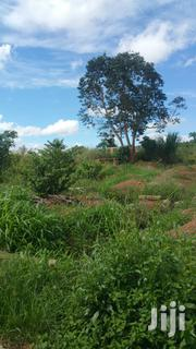 Full Plot At Abuakwa Agogo For Sale | Land & Plots For Sale for sale in Ashanti, Kumasi Metropolitan