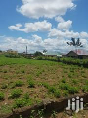 Macedonia, SAPEIMAN: 2 Plots of Fenced Land | Land & Plots For Sale for sale in Greater Accra, Accra Metropolitan