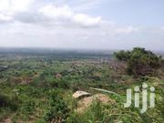 Lands For Sale At Aburi | Land & Plots For Sale for sale in Eastern Region, Akuapim South Municipal