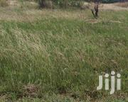 Buy an Affordable Land at Peaceland | Land & Plots For Sale for sale in Greater Accra, Tema Metropolitan