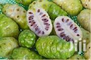 Noni Fruit For Sale | Meals & Drinks for sale in Greater Accra, Adenta Municipal