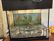 Fish Aquarium | Pet's Accessories for sale in Greater Accra, Tema Metropolitan