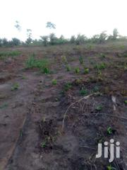 51acres Farm Land Sogakope For Long Lease | Land & Plots For Sale for sale in Greater Accra, Cantonments
