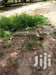 Land For Sale At Amasaman Cocoa Bord | Land & Plots for Rent for sale in Ga West Municipal, Greater Accra, Ghana