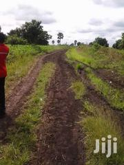 5000 Acres Farming Lands Ghana   Land & Plots For Sale for sale in Greater Accra, East Legon