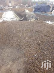Palm Kernel Nuts | Feeds, Supplements & Seeds for sale in Greater Accra, Ashaiman Municipal