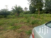 10 Acres for Sale | Land & Plots For Sale for sale in Eastern Region, Suhum/Kraboa/Coaltar
