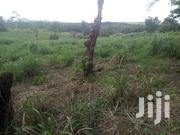 4 Acres Land for Sale | Land & Plots For Sale for sale in Eastern Region, Suhum/Kraboa/Coaltar