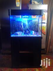Aquarium | Pet's Accessories for sale in Greater Accra, Ashaiman Municipal