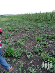 Farm Lands 4 Watermelon At Ada | Land & Plots For Sale for sale in Greater Accra, Adenta Municipal