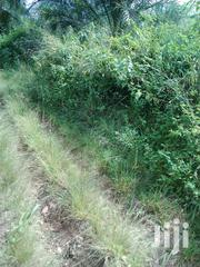 8 Acres Registered Farmland at Asamankese | Land & Plots For Sale for sale in Greater Accra, Ga East Municipal