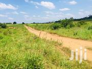 Serviced Plots for Sale at Amasaman | Land & Plots For Sale for sale in Greater Accra, Ga South Municipal