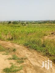 Litigation Free Lands for Sale   Land & Plots For Sale for sale in Greater Accra, Ga South Municipal