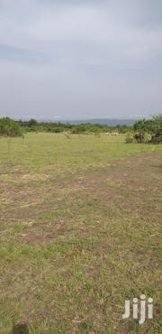 Land For Sale At Shai Hills | Land & Plots for Rent for sale in Greater Accra, Tema Metropolitan