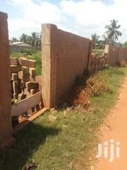 Two Plot Situate at Road Side for Sale Volta Aflao Viepe | Land & Plots For Sale for sale in Volta Region, Ketu South Municipal