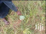 Neat and Genuine With Document   Land & Plots For Sale for sale in Northern Region, Tamale Municipal
