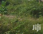 Lands For Sale, Prampram   Land & Plots For Sale for sale in Greater Accra, Ga West Municipal